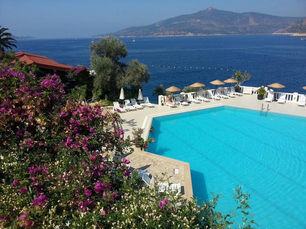 Main Resort Pool - 25m