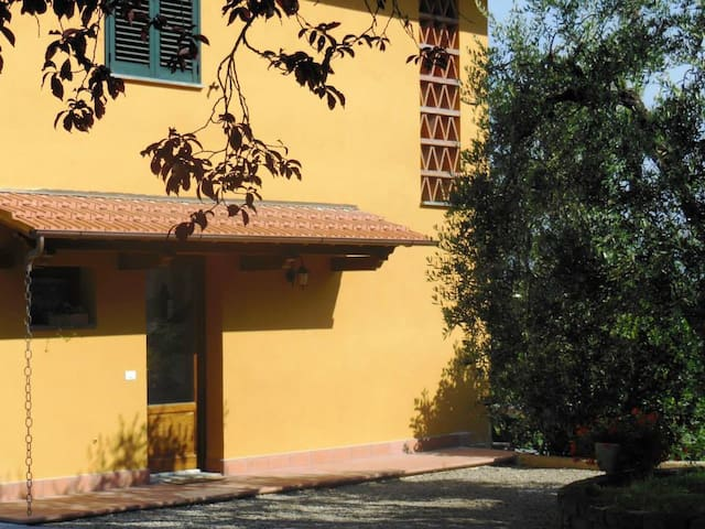 Bed & Breakfast La Calandruccia - Santa Maria a Monte - Bed & Breakfast