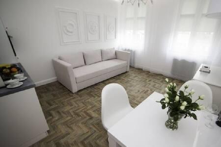 frisch renovierte Designerwohnung