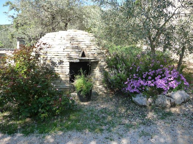 Le gîte d'Anthénéa - Saint-Christol-lès-Alès - Daire