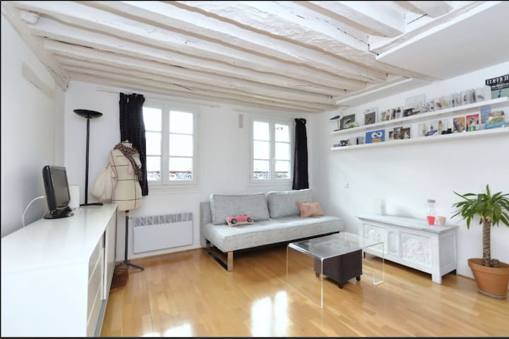 PLEASANT AND PRACTICAL STUDIO LOCATED IN THE HEART OF PARIS