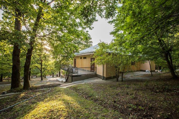 Mustafabey Green Park Sheki