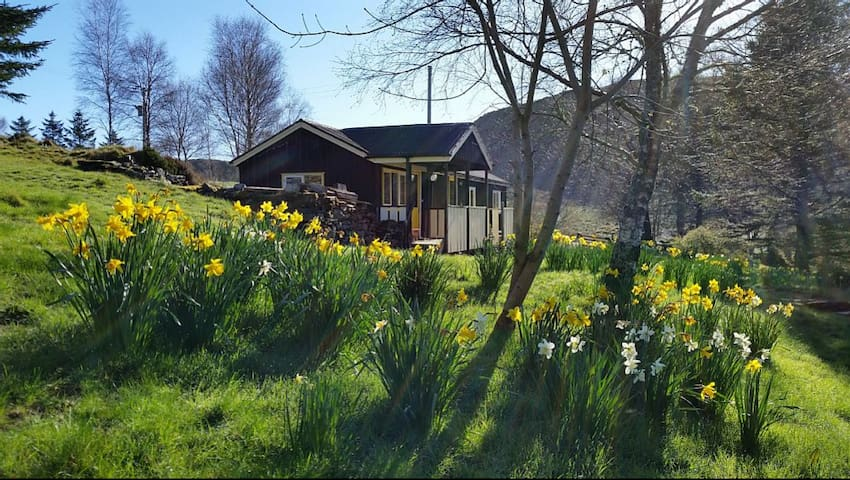 2 bedroom chalet in a secluded, peaceful glen. - Ardfern