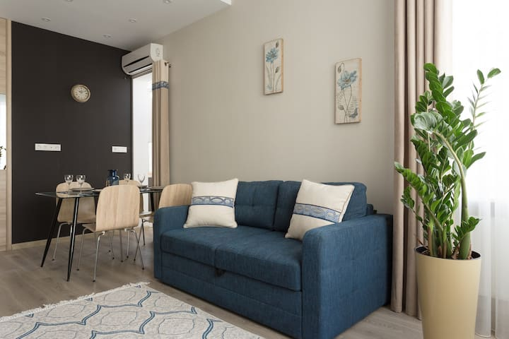 Spacious new 1-bedroom apartment in Arcadia