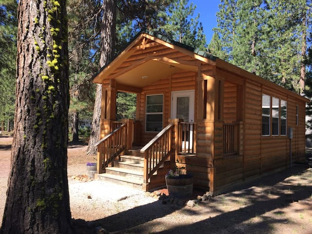 Log cabin between Lake Almanor and Eagle Lake