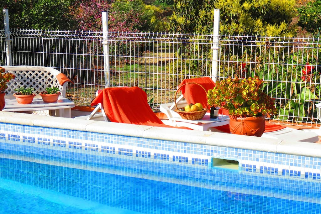 Private pool and solarium. Surrounded by fruits trees and flowers.