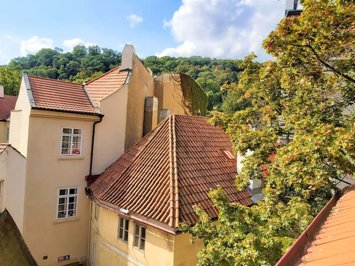 Cozy flat in the roofy heart of Prague