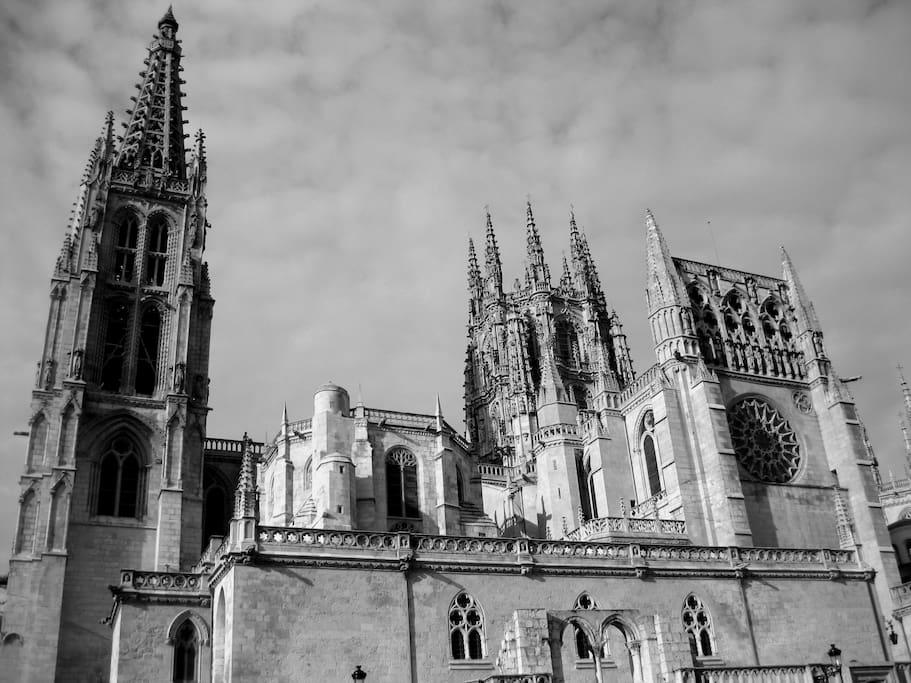 Nuestra maravillosa catedral
