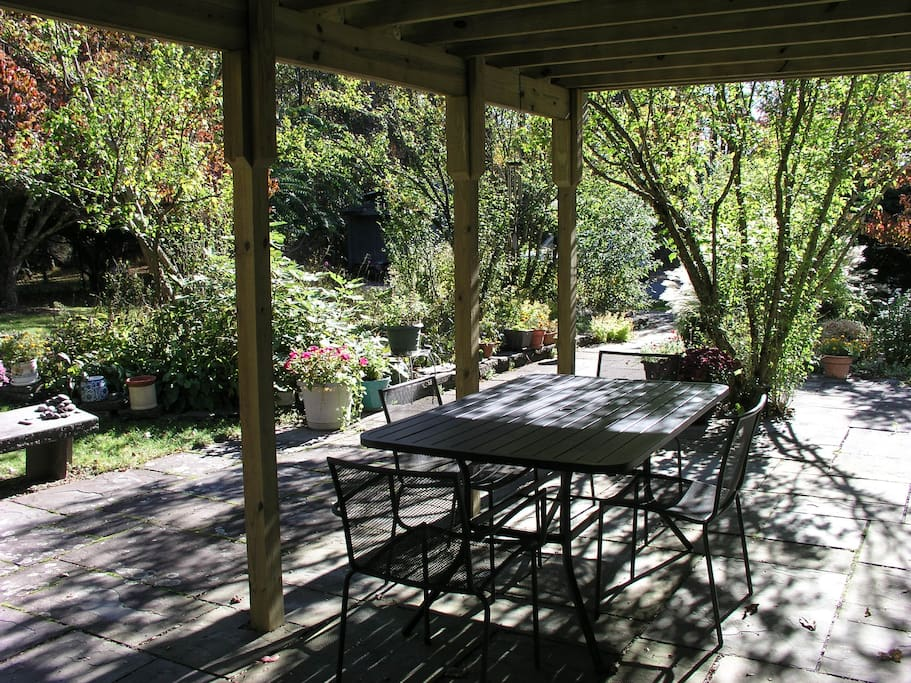 Dappled sunlight and hummingbirds in the backyard garden