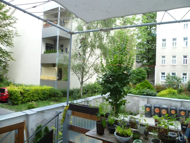 Room in big shared flat near danube - Vienne - Appartement