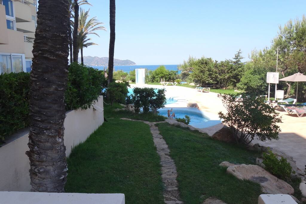Acceso directo a la piscina desde terraza del apartamento