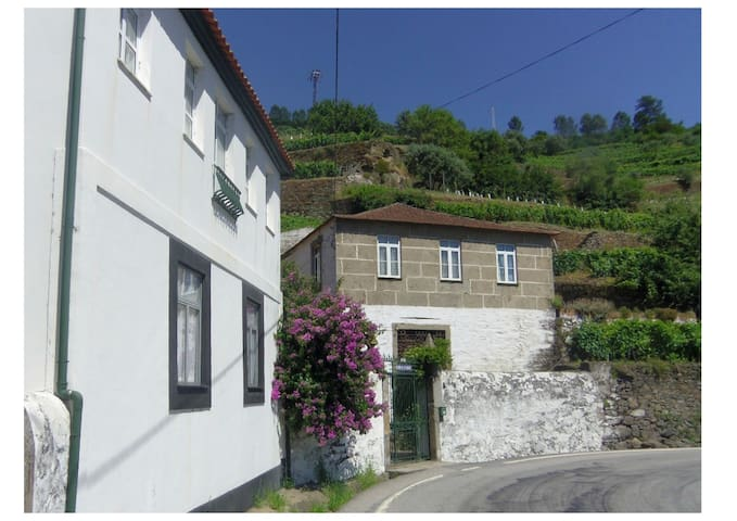 Farmhouse in Douro Vineyard Region - Vila Marim - Дом