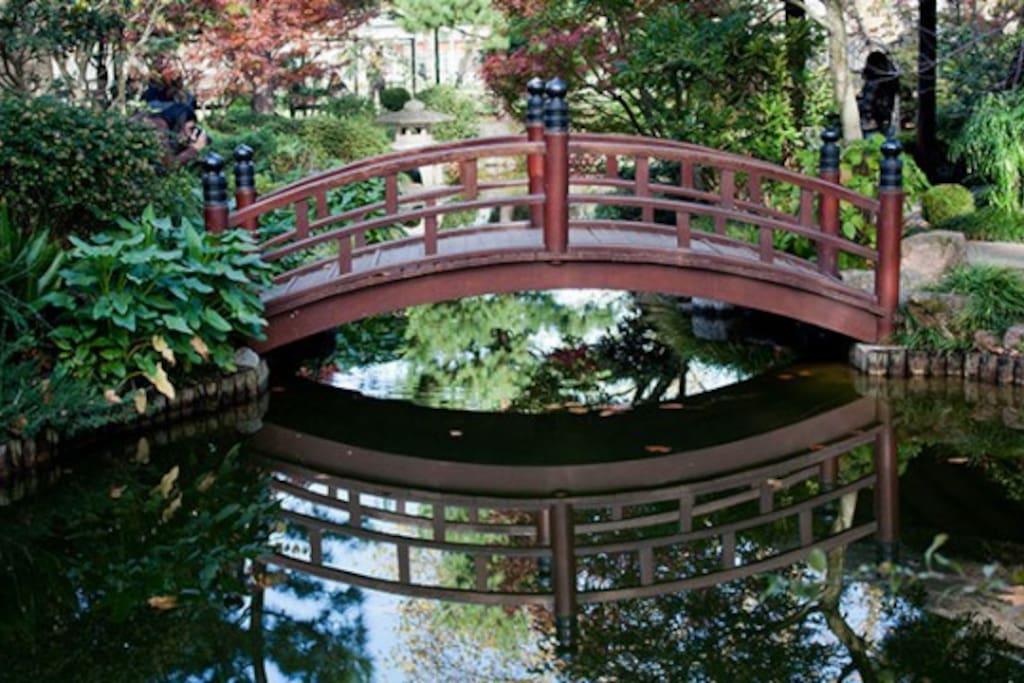 Jardin japonés a pocas cuadras