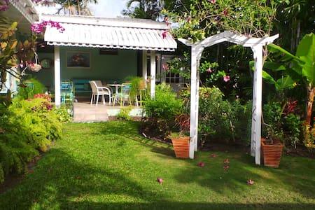 Ivy's Place An Island Oasis - Bridgetown