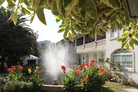 Hotel centro de Vigo 5000 m2 jardin - Vigo