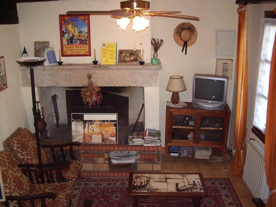 Salon avec cheminée ouverte et canapé convertible 2 places