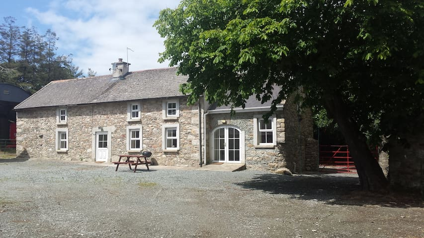 Doyle's Farmhouse, Dunmain. - New Ross - Hus