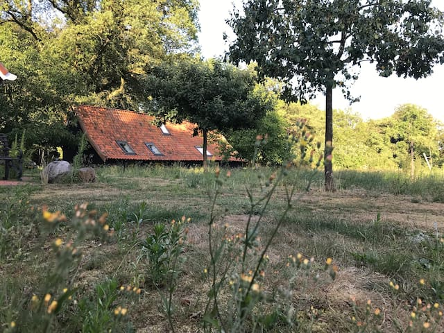 A private eco-lodge just outside of Enschede