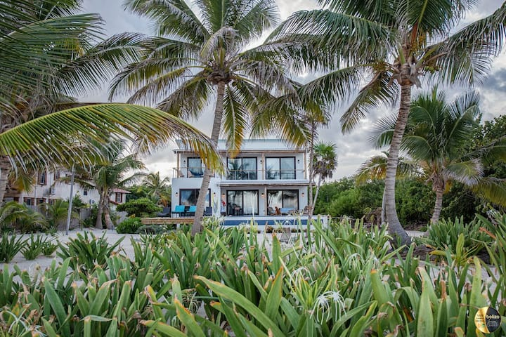 Gold Standard Beachfront private home, pool, cook!