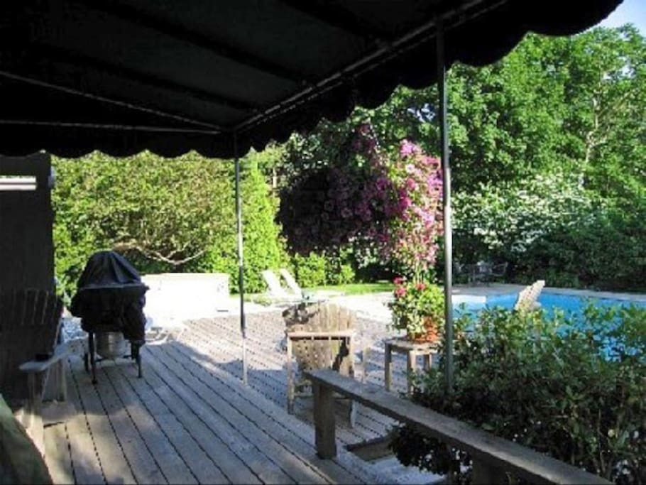 Eat al fresco with a lovely view of the pool and super private backyard
