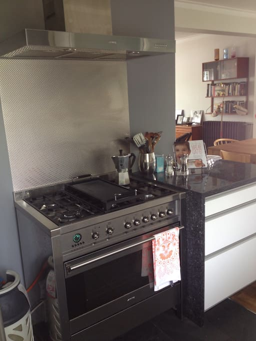 Modern gas stove and oven