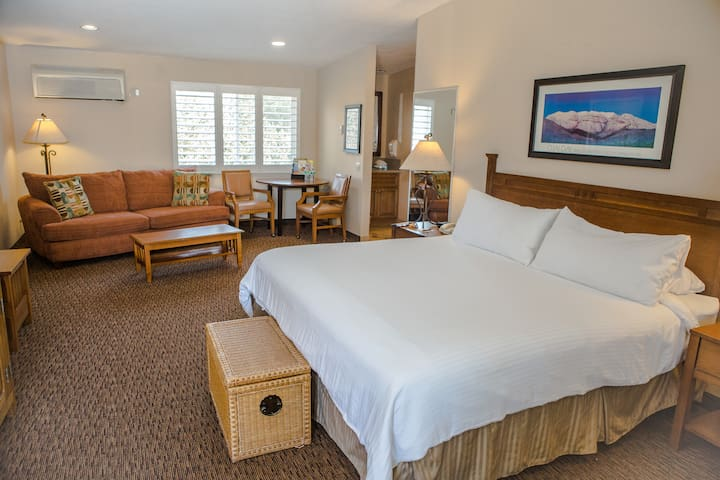 Large Extended Stay EcoRoom
