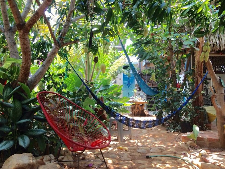 Scape from the heat. Enjoy the hammocks in our yard