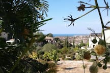 front veranda sea view!