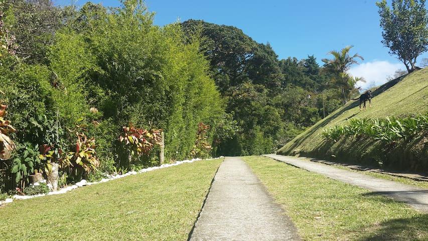 Rodeada de hermosa naturaleza y rio - San Isidro - Casa