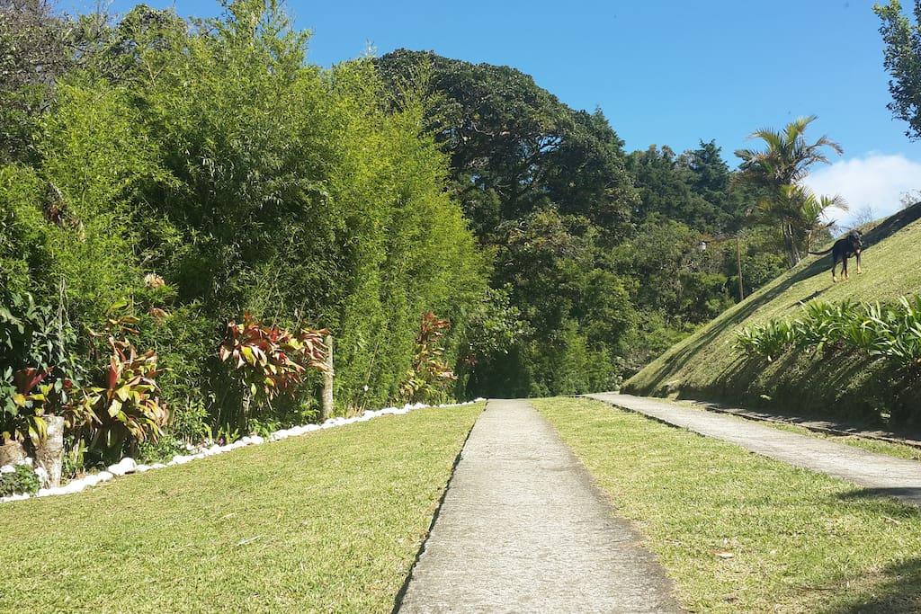 Rodeada de hermosa naturaleza y rio houses for rent in for Naturaleza hermosa