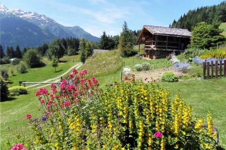 Le Grenier, gîte pour deux dans un lieu unique  ! - Villard-sur-Doron - Nature lodge