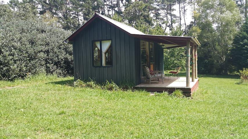 Waihi rustic cabin