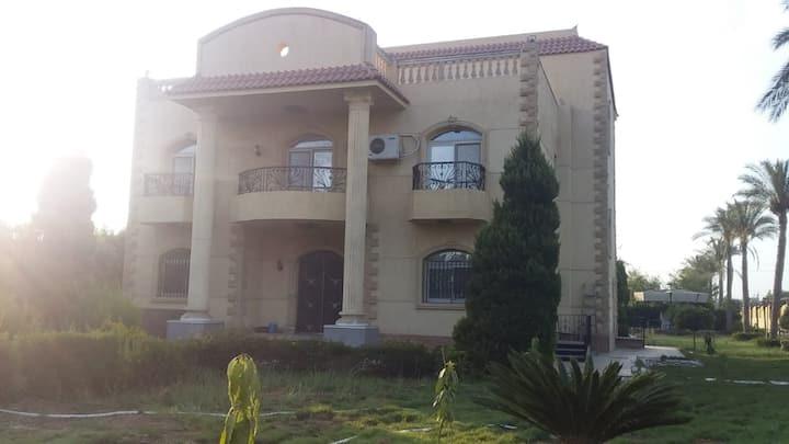 The Palm villa