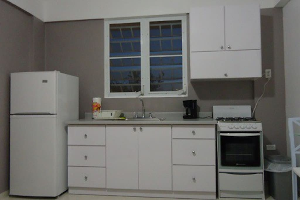 Kitchenette with stove, microwave and fridge