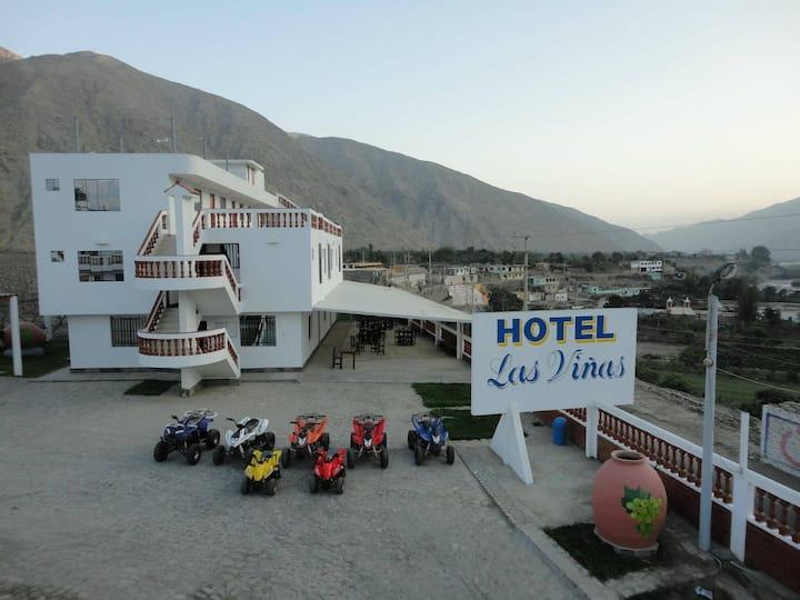 HOTEL LAS VIÑAS  DE LUNAHUANA