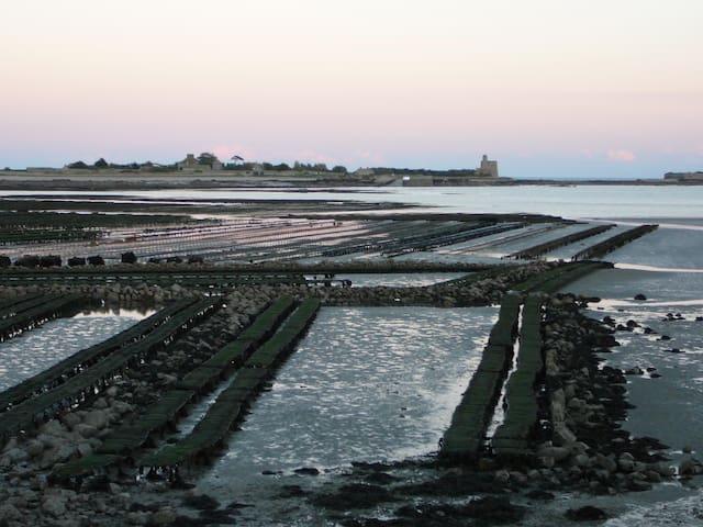 L'île Tatihou et les parcs à huîtres