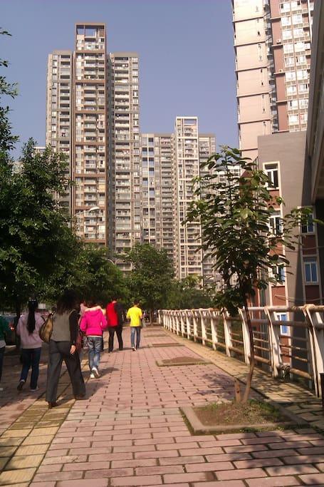 从主干道到住宿 the pavement outside of our building