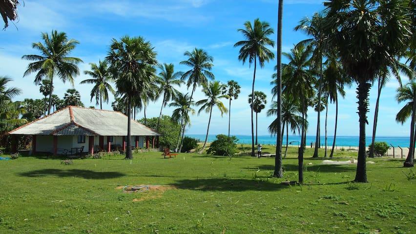 108 Palms Beach Resort (Beach Front Bungalow 4pax) - Trincomalee - Bungalo
