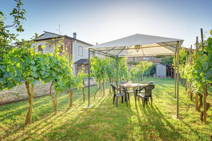 Rocchi Apartment - Real Tuscan experience