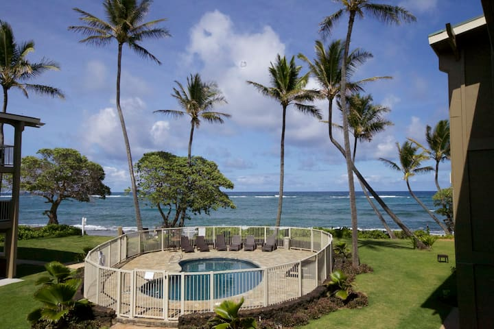 2bd Ocean front + Kitchen Just released:Jun & July - Kapaa - Lejlighed