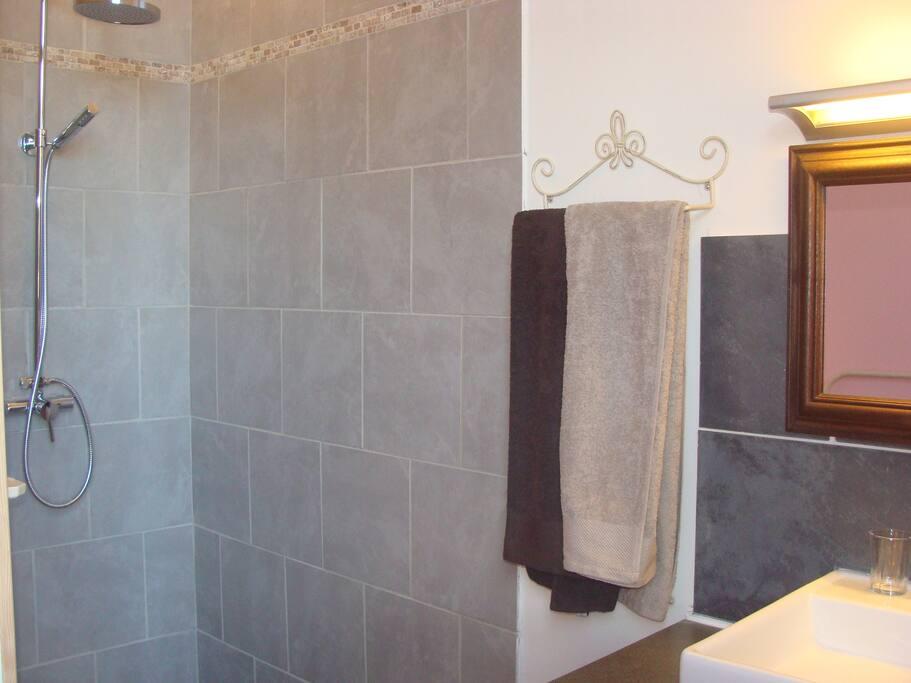 Chambre 1 espace douche (Serviettes fournies)