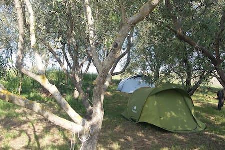 Campeggio nel verde a 10 km da Perugia e Assisi