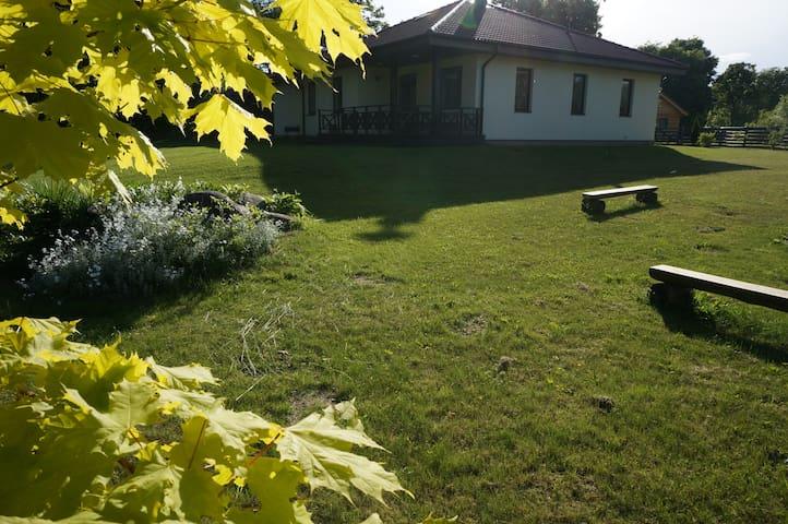 kociņi - Jelgava