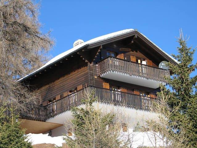 Amazing Swiss ski chalet - Vex - Chalet
