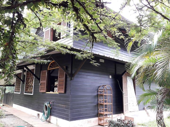 Maison en bois en lisière de forêt et de crique