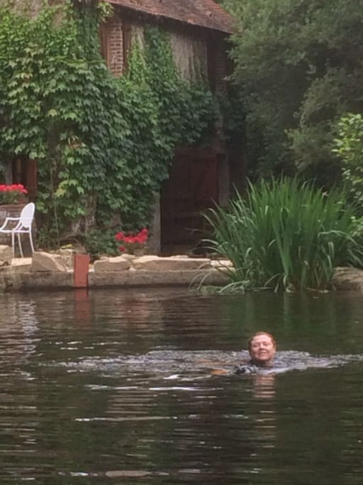 Your own oasis for swimming right in your garden at the cottage!