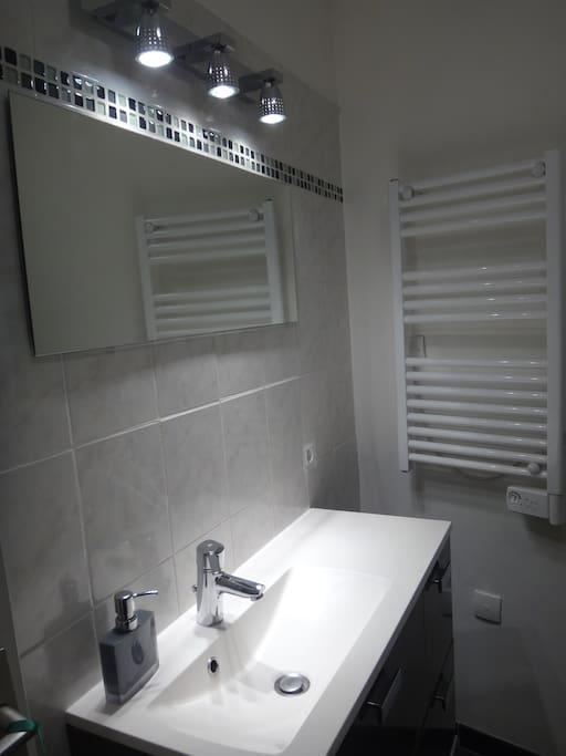 SDB avec vasque, douche et wc