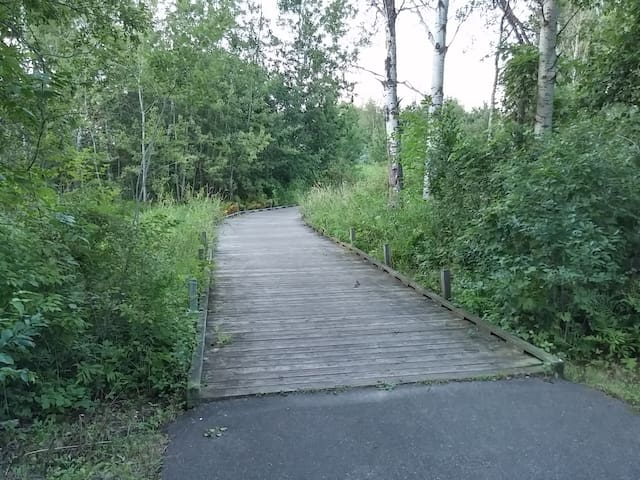 One of three wetland boardwalks on another trail.