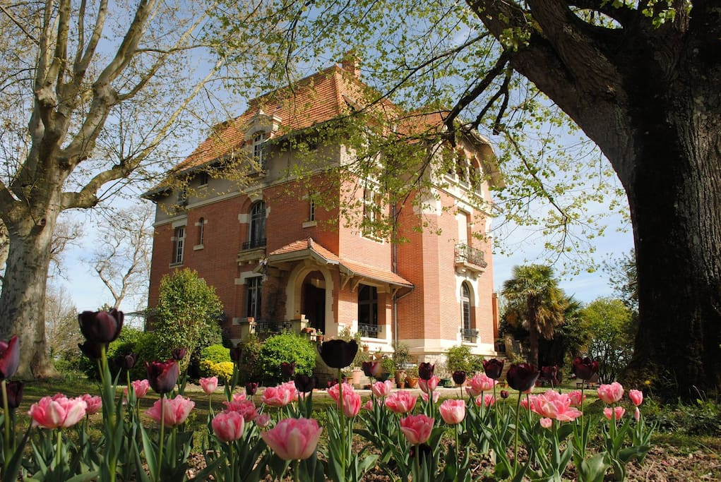 Chateau mezger cedar room bed and breakfasts for rent for Albefeuille lagarde