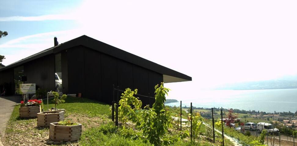 Panorama unique sur le Lac Léman - Mont-sur-Rolle - Guesthouse